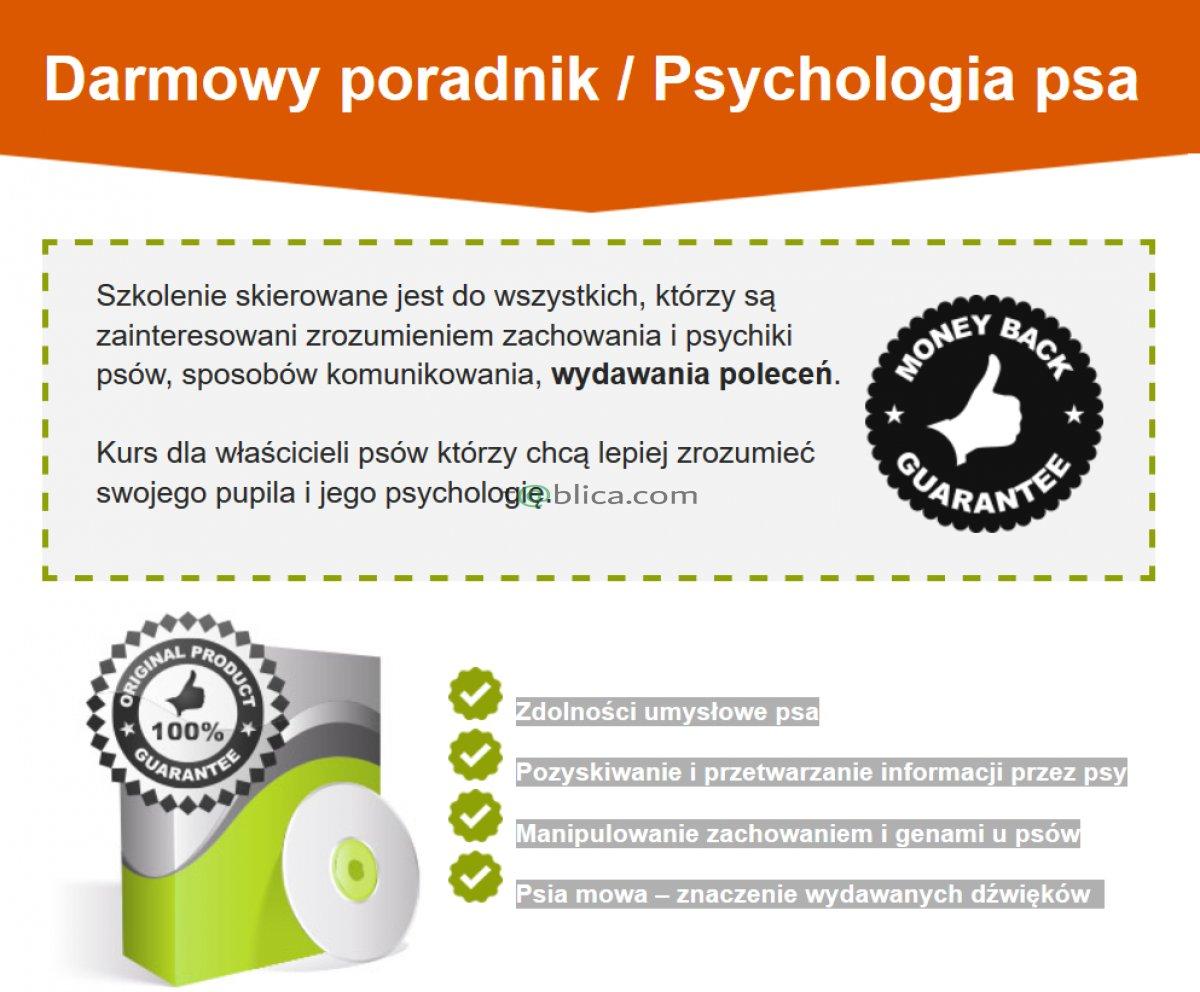 Psychologia psa / Darmowy poradnik