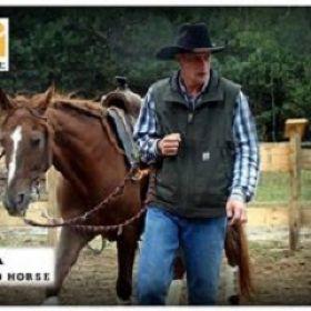 PRO HORSE Sklep Jeździecki -Zapraszamy na udane zakupy